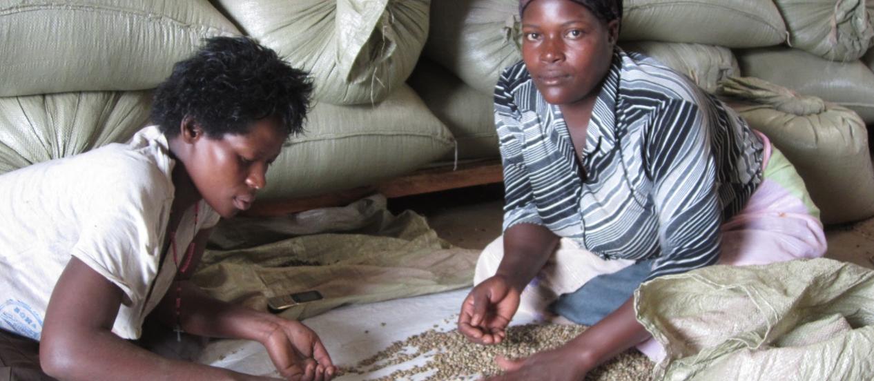 Jongeren aan het werk in Uganda